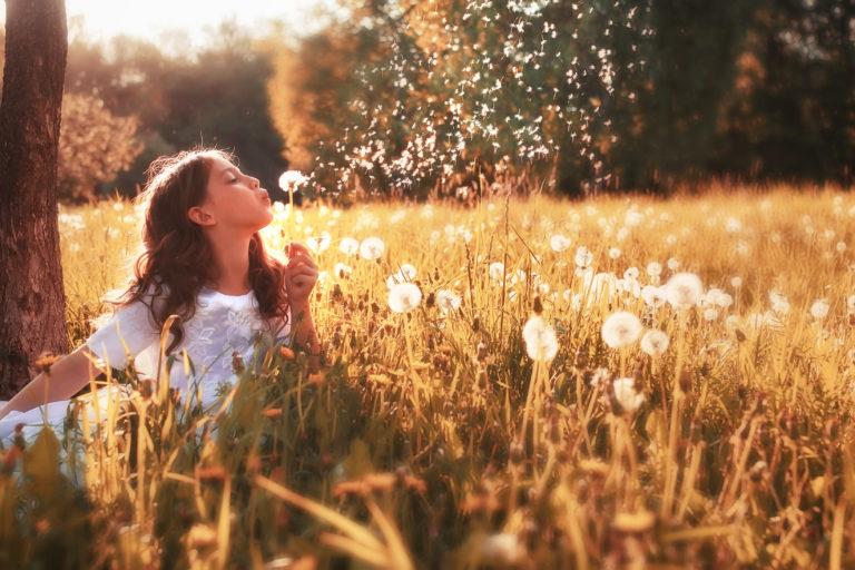 Young girl blowing dandelion seeds in a field in the spring.